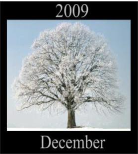 The EmoTrance December 2009 Newsletter